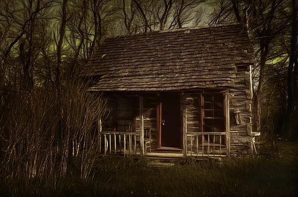 The Hermit's Cabin Print by Julie Dant