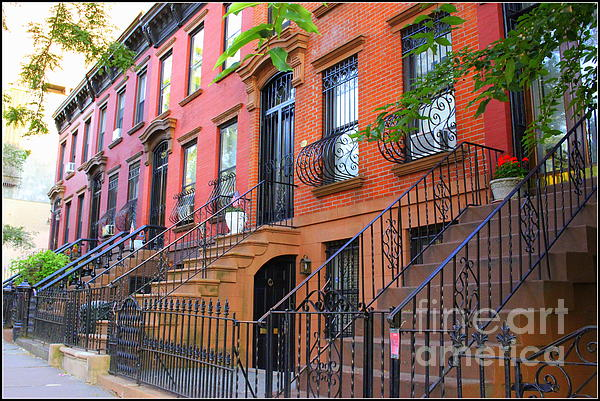 Dora Sofia Caputo - The Historic Brownstones of Brooklyn