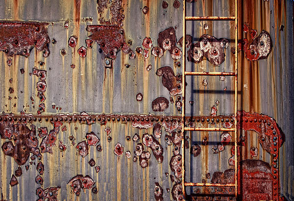 The Ladder Print by Marcia Colelli