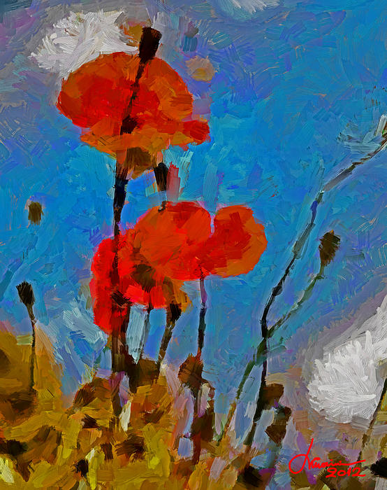 The Lovely Poppies Tnm Print by Vincent DiNovici