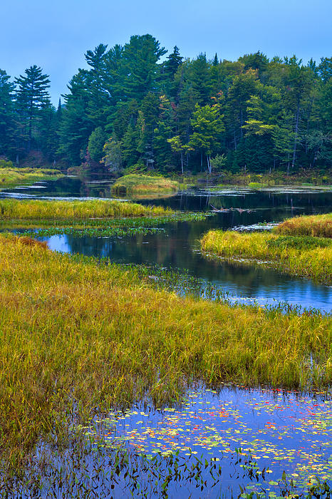 The Meandering Moose River - Old Forge New York Print by David Patterson