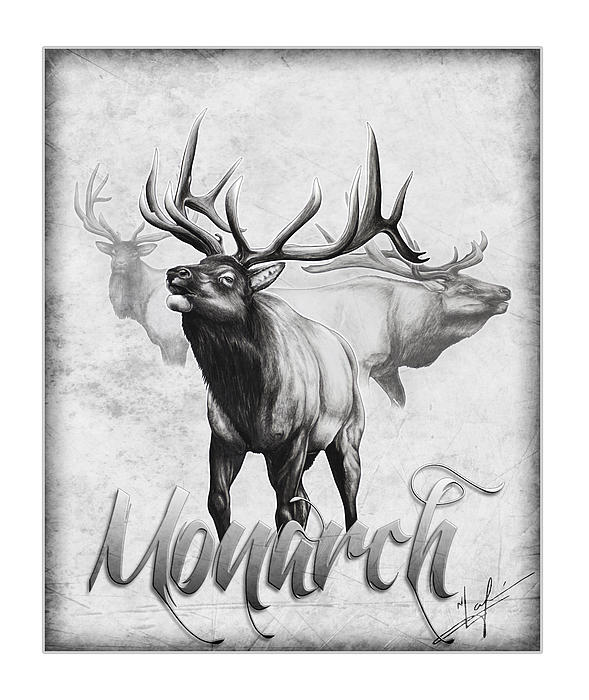 The Monarch Print by Nick Laferriere