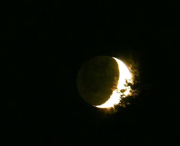 The Moon Last Night By Ronda Broatch