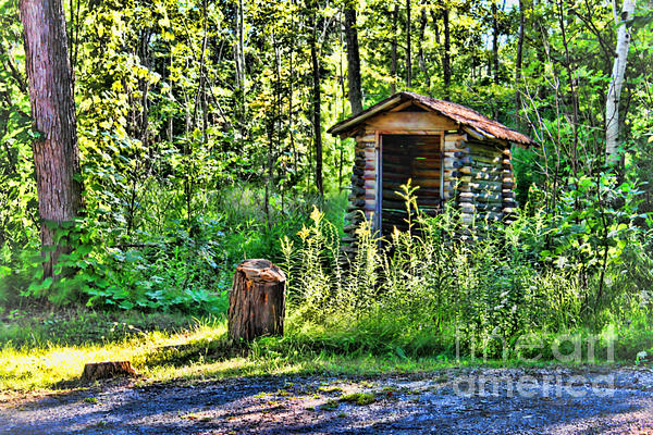 The Old Shed Print by Cathy  Beharriell