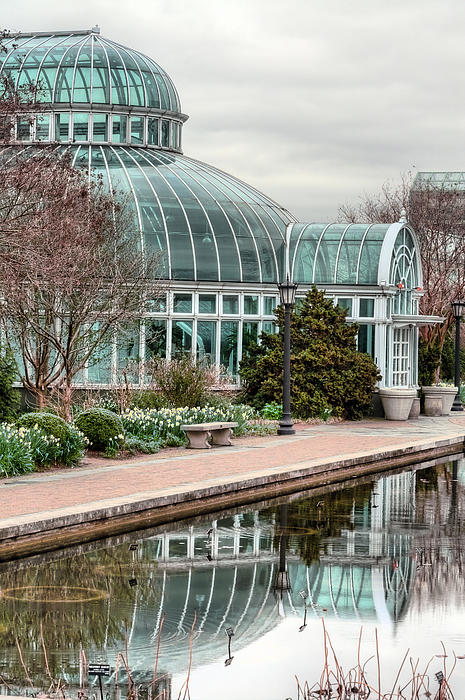 The Palm House Print by JC Findley