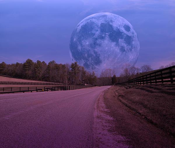 The Peace Moon Print by Betsy C  Knapp