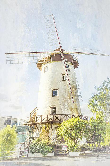 The Penny Royal Windmill Print by Elaine Teague