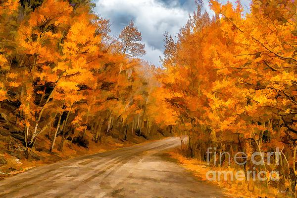 The Road Less Traveled Print by Jon Burch Photography