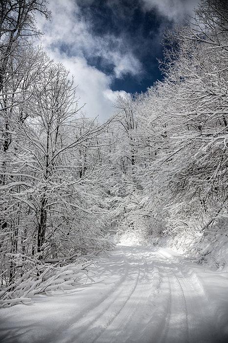 The Road To Winter Wonderland Print by John Haldane