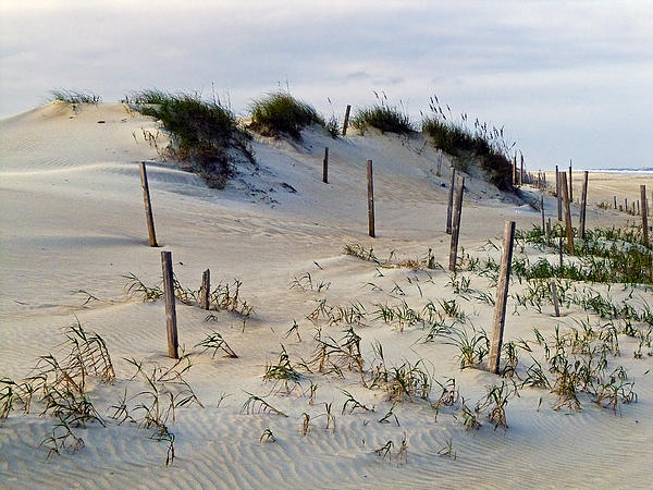 Greg Reed - The Sands of OBX II