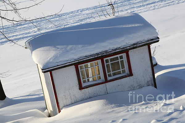 The Shed Print by Sophie Vigneault