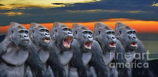 Jim Fitzpatrick - The Singing Gorillas
