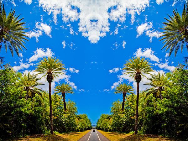The Sky Has Eyes Print by Scott Harms