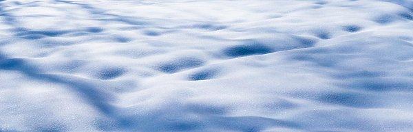 The Snow Carpet - Featured 2 Print by Alexander Senin