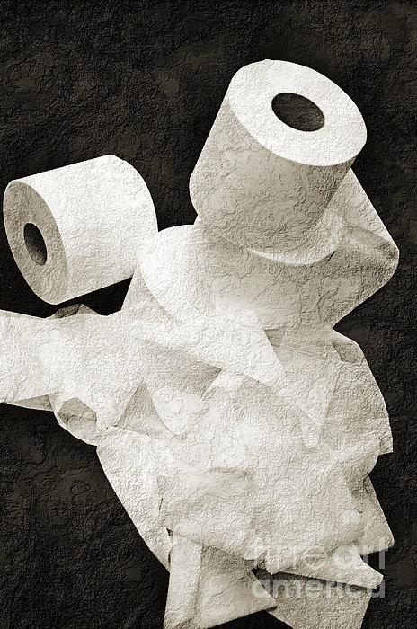 The Spare Rolls 1 - Toilet Paper - Bathroom Design - Restroom - Powder Room Print by Andee Design