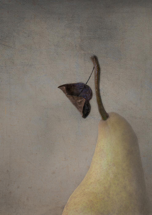 Constance Fein Harding - The Sunday Pear