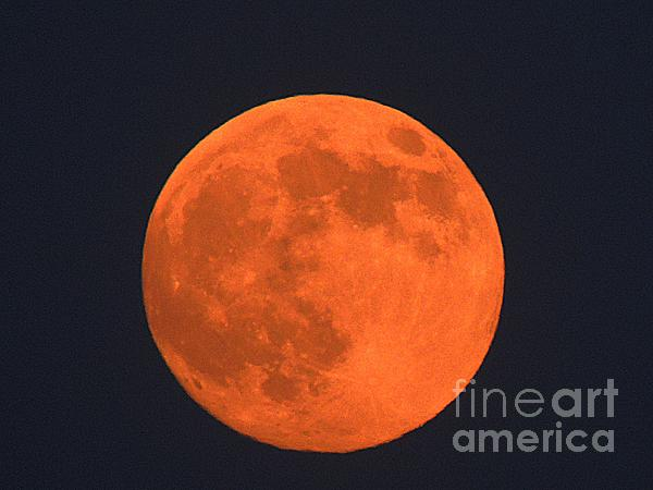 The Super Moon Print by Marcia Lee Jones