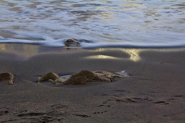 Anne Rodkin - The Tide