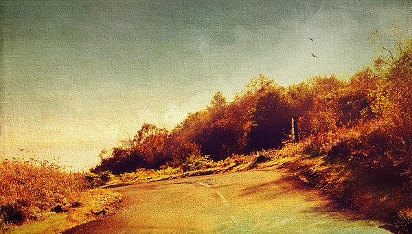 The Way Down. Trossachs National Park. Scotland Print by Jenny Rainbow