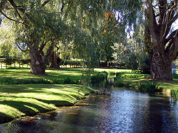 The Willows Of Grand Pre Print by George Cousins