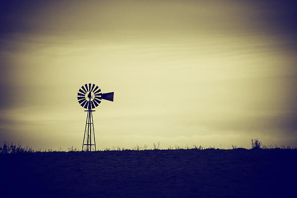 The Windmill Print by Karol  Livote