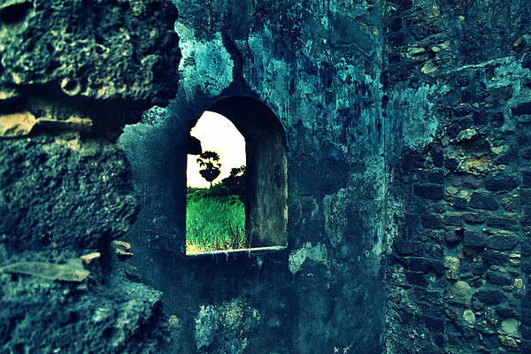 The Window Print by Salman Ravish