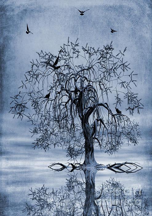 The Wishing Tree Cyanotype Print by John Edwards