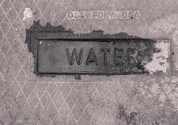 Thirst Print by Steven Milner