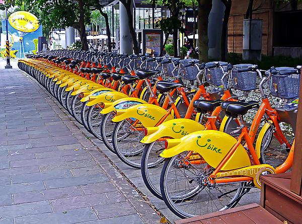 Thirty Yellow Bicycles In Taipei Print by Tony Crehan