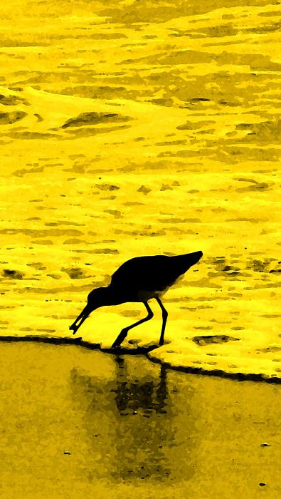 This Beach Belongs To Me Print by Ian  MacDonald