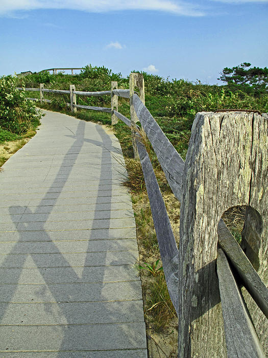 This Way To The Beach Print by Barbara McDevitt