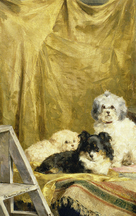 Three Dogs Print by Charles van den Eycken