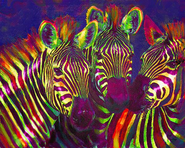 Three Rainbow Zebras Print by Jane Schnetlage