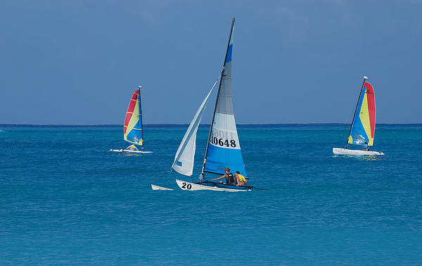 Three Sailboats Print by Phyllis Peterson