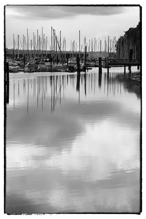 David Patterson - Tide Flats Marina