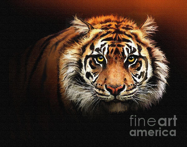 Tiger Bright Print by Robert Foster
