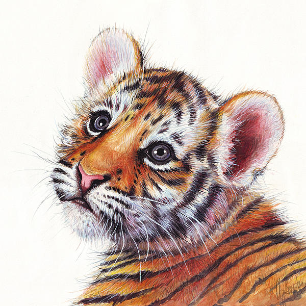 Olga Shvartsur - Tiger Cub Watercolor Painting