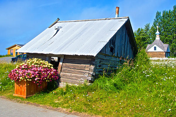 Tilted Shed In Old Town Kenai-ak Print by Ruth Hager