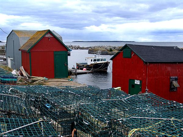 Tiny Little Harbour Print by Janet Ashworth