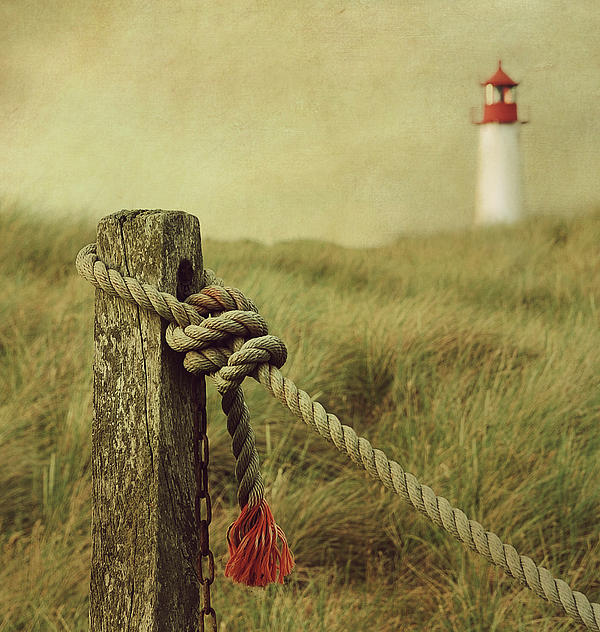 To The Lighthouse Print by Hannes Cmarits