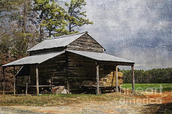 Tobacco Barn In North Carolina Print by Benanne Stiens