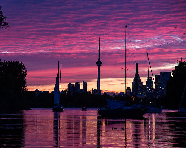 Georgia Mizuleva - Toronto Skyline - the Boats Are Coming In