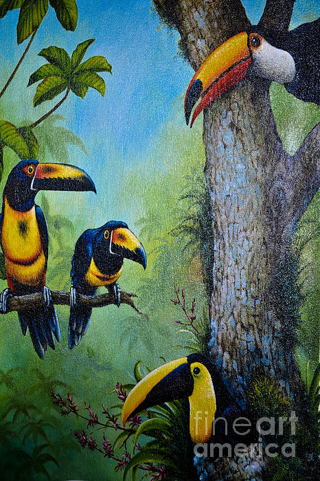 Gary Keesler - Toucan Plunder Party
