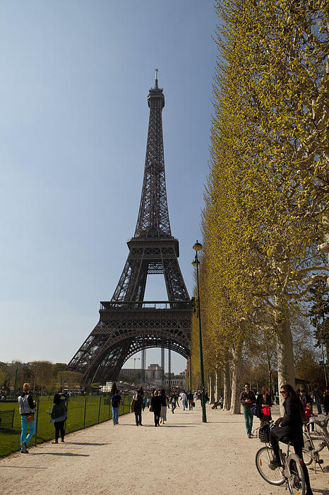 Tour Eiffel 6 Print by Art Ferrier