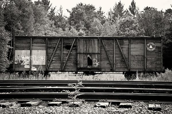 Trains Print by David Fox Photographer