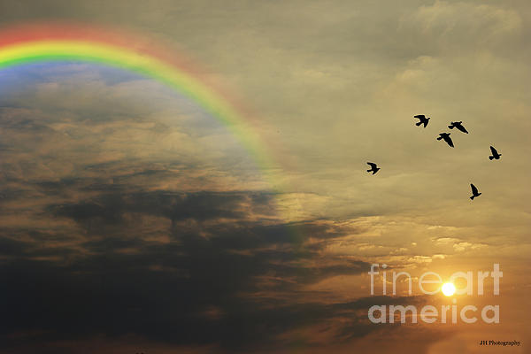 Tranquil Sunset And Rainbow Print by Jay Harrison