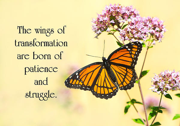 Transformation. Print by Kelly Nelson