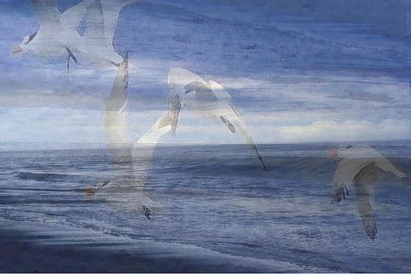 Transparent Flight Print by James Chesnick