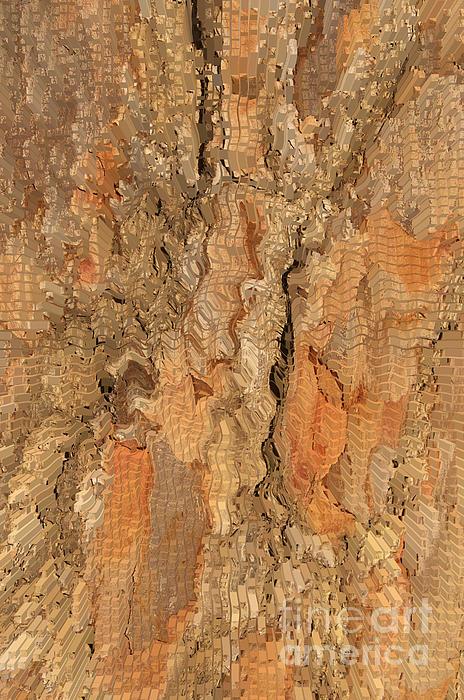 Tree Bark Abstract Print by Cindy Lee Longhini