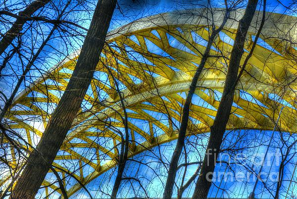 Tree Bridge Designs Print by Mel Steinhauer